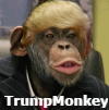 Picture of sigmonkey